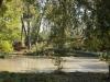 Pond-Katrina-1024x684
